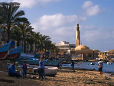 Alexandria,-where-the-Muslim-ring-was-uncovered