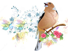 The Song of a thrush